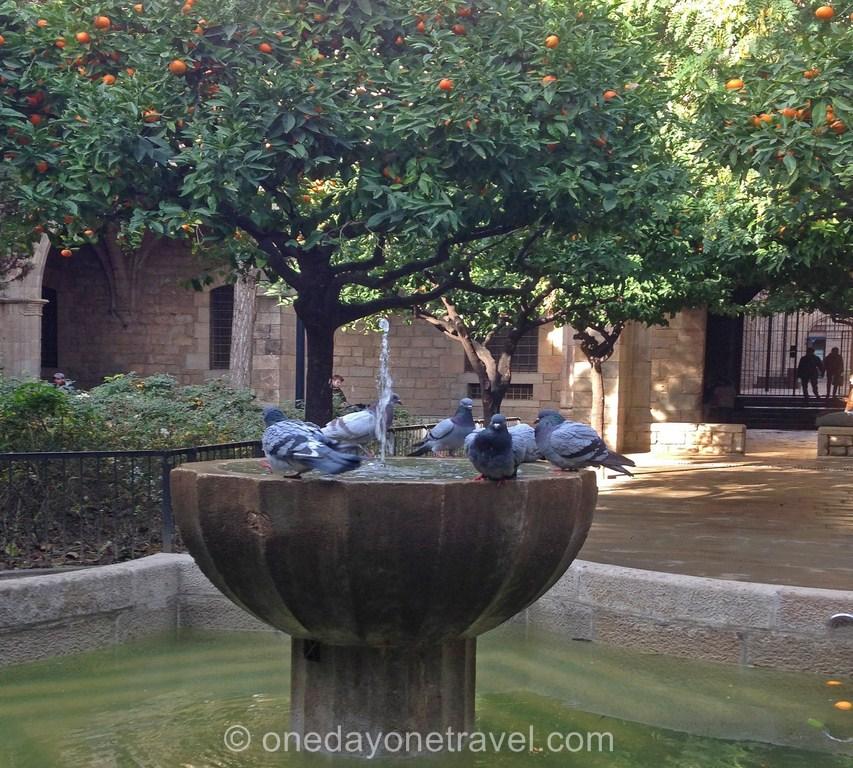 Visiter le quartier du raval Barcelone fontaine