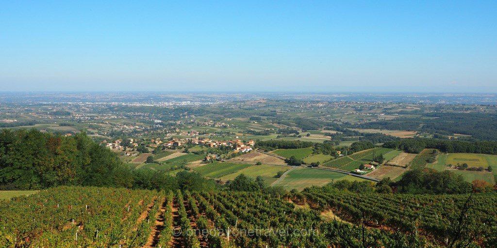beaujolais vignobles vue