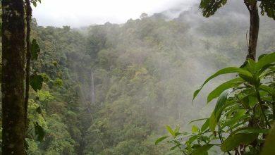 Photo of Interview blogueur voyageur : Le Costa Rica par Vincent