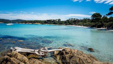 Photo of Îles d'Hyères : Quelle île choisir ? Porquerolles, Port-Cros ou le Levant