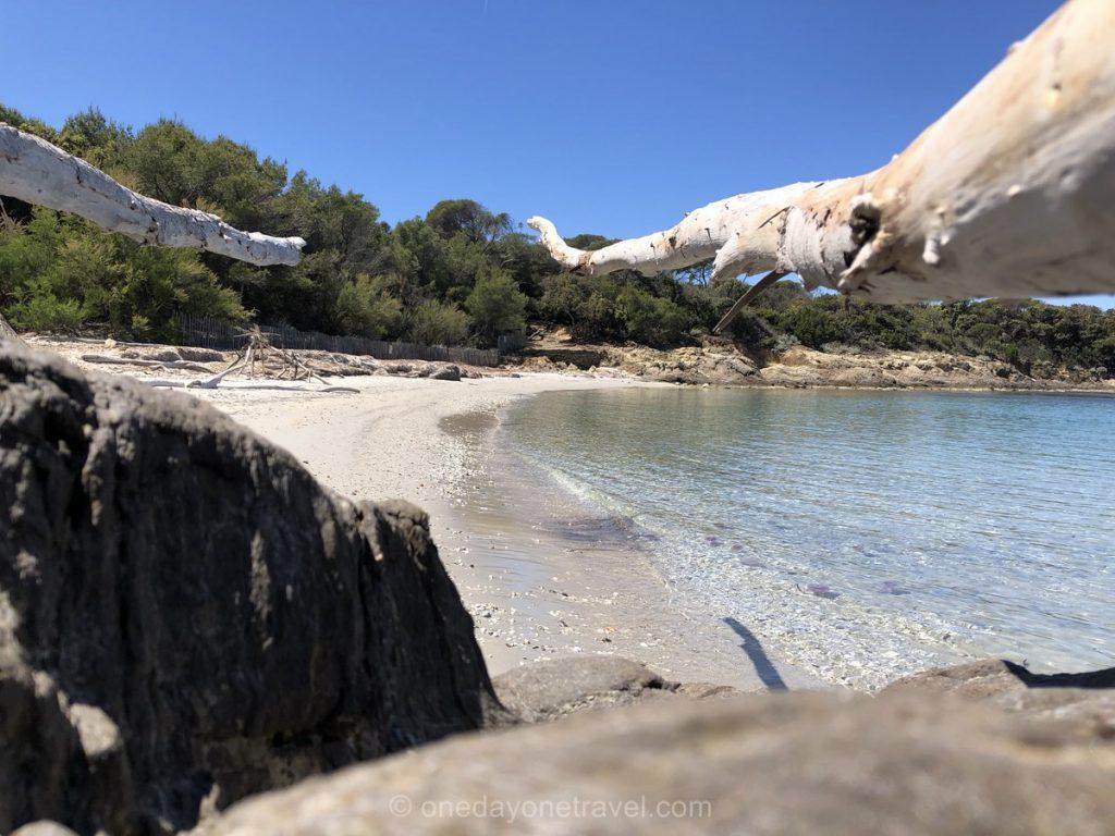 Plage de sable blanc île de Port-cros