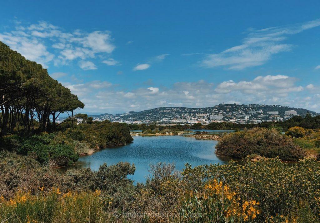 Road trip dans le sud de la France Ile Sainte Marguerite étang