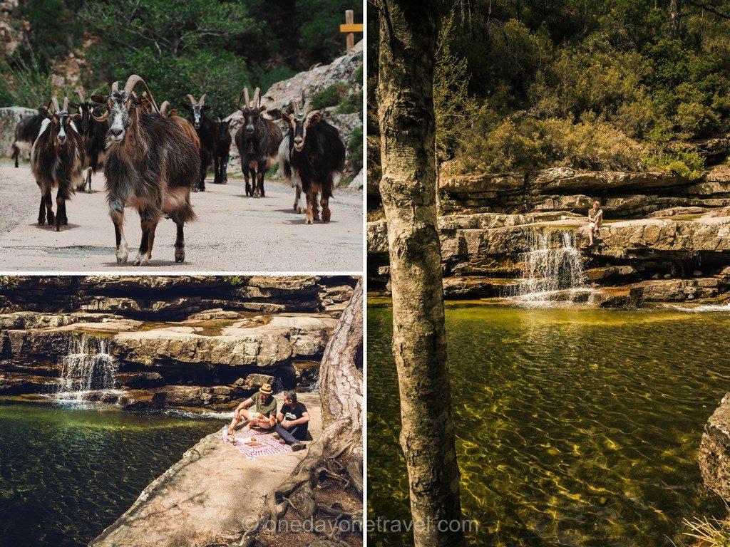 Les piscines naturelles de la forêt d'Aitone en Ouest Corsica