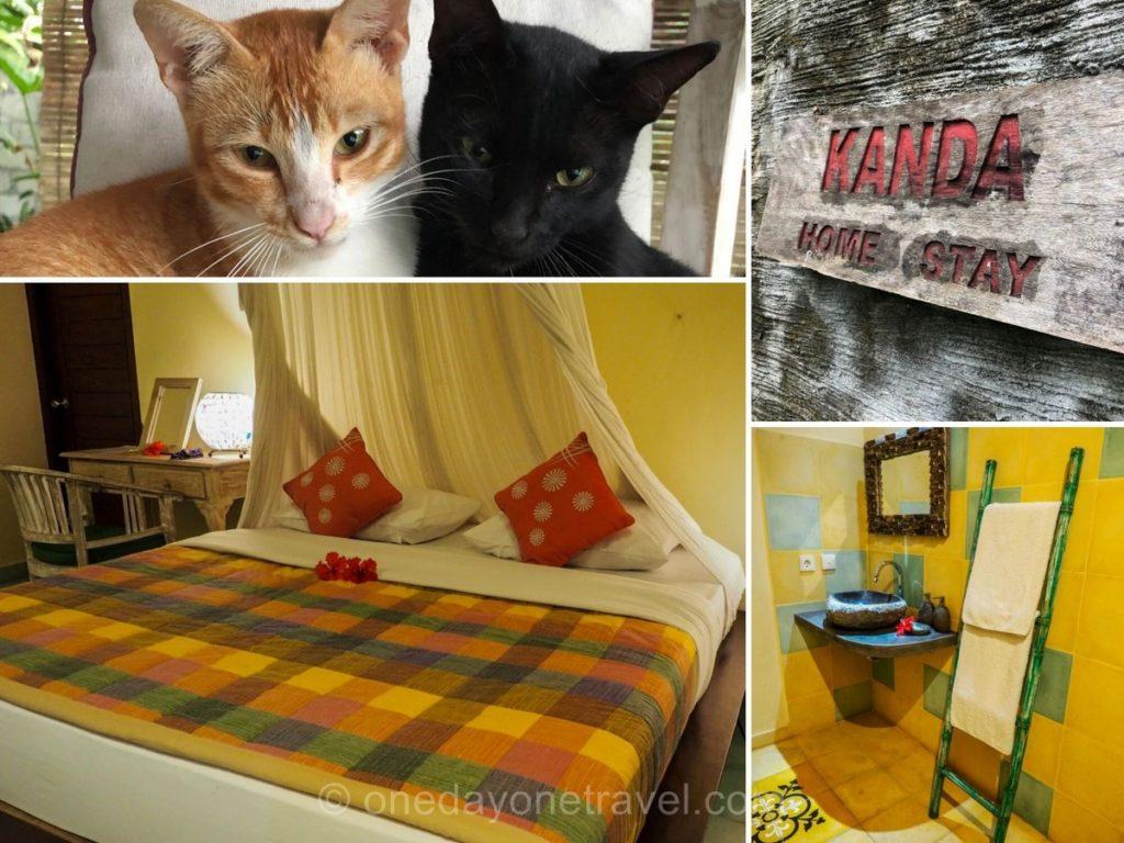 Kanda Homestay Sidemen - Où dormir à Bali