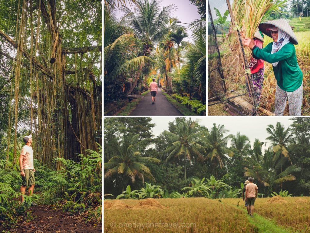 Voyager à Bali - Blog voyage OneDayOneTravel