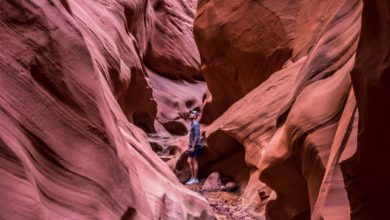 Photo of Visiter Page en Arizona : Antelope Canyon, The Wave et le lac Powell