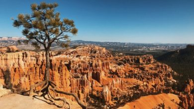 Photo of Visiter Bryce Canyon : Nos conseils et bons plans visites