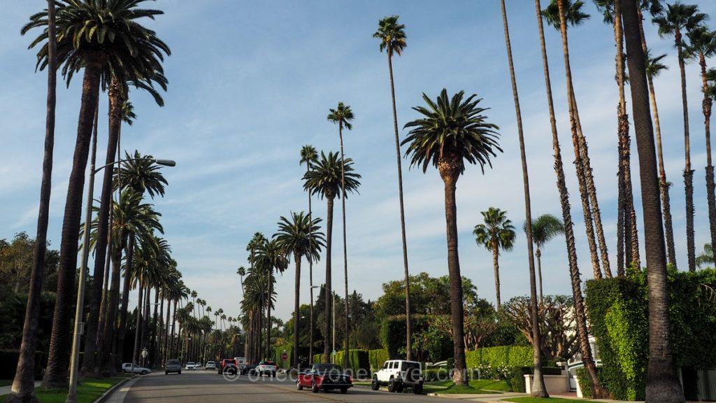 Quartier de Beverly Hills à Los Angeles - Tour en minibus pour voir les stars