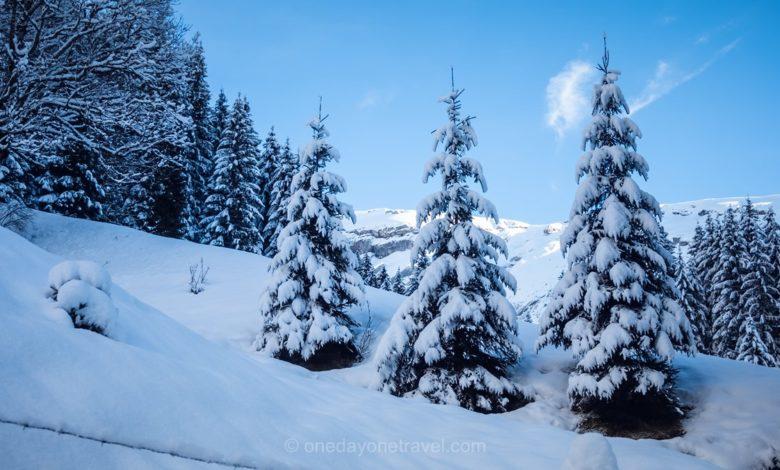 Photo of Séjour à Morzine dans les Alpes Françaises entre ski alpin et raquettes à neige