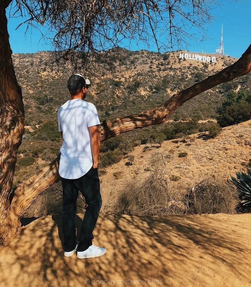 Vue sur les lettres Hollywood à Los Angeles