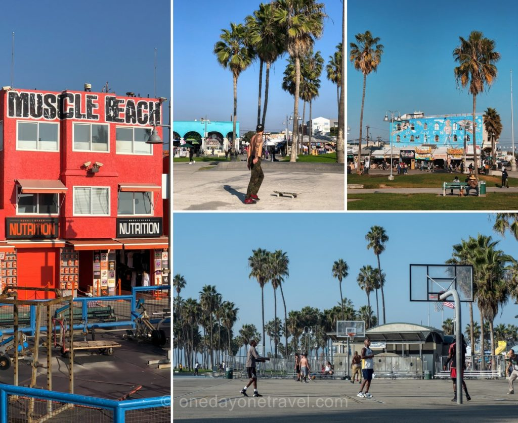 Muscle beach - Venice Los Angeles