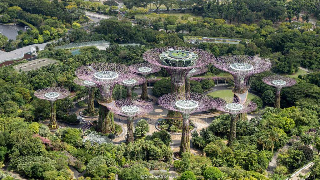 Singapour supertrees vue du Marina Bay Sands