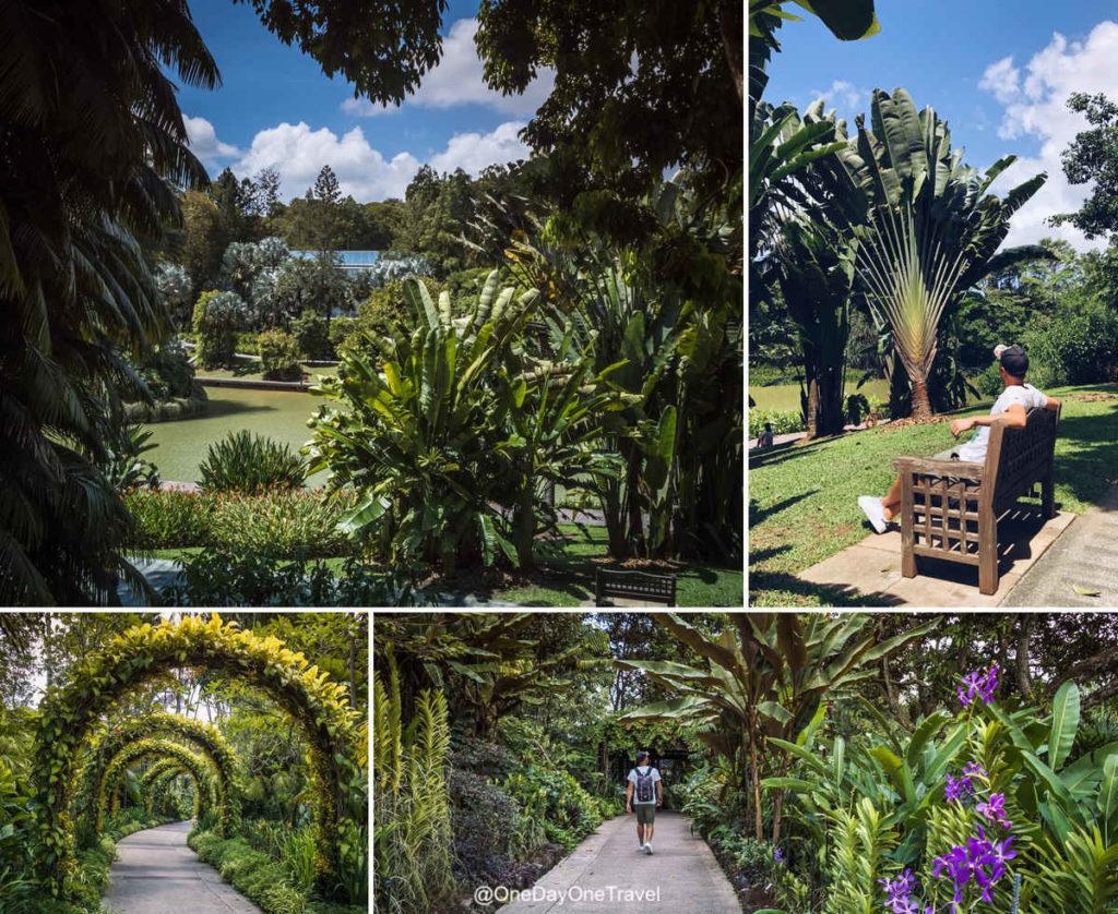Visiter Singapour et son jardin botanique