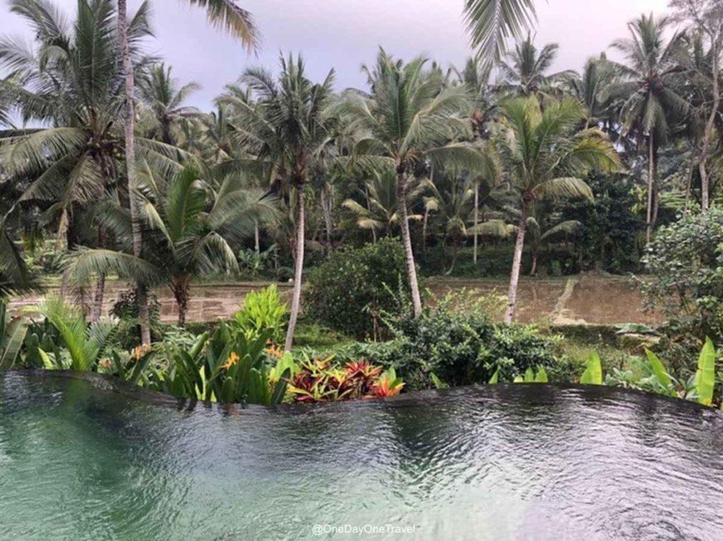 Calma Suite & Villas à Ubud Bali